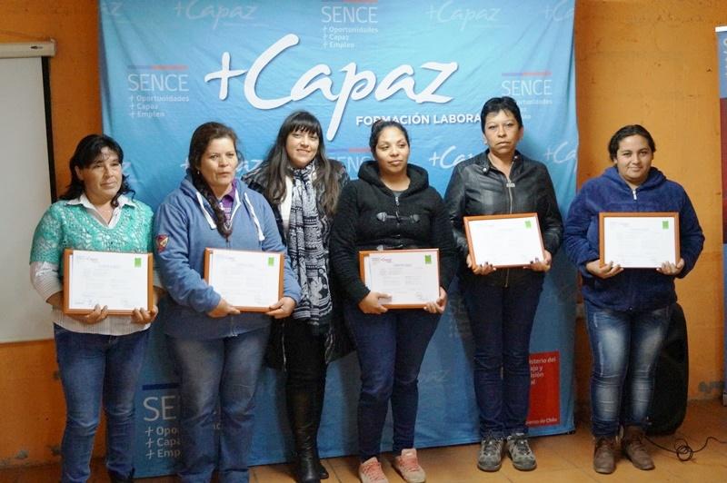 Las postulaciones la Programa +Capaz están disponibles en www.sence.cl